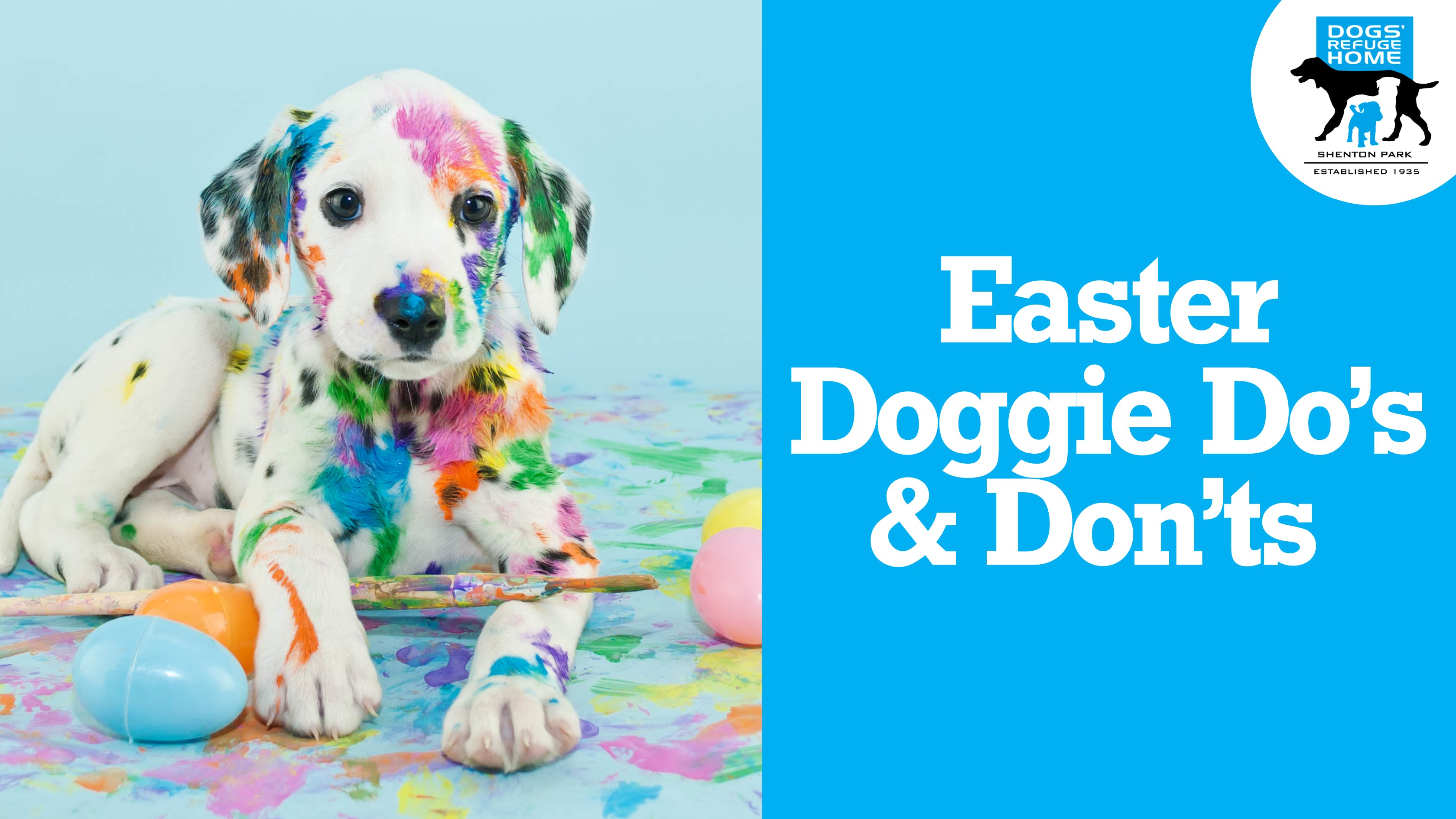 Easter Doggie Dos and Dont's
